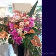 美容室開店祝い スタンド花 胡蝶蘭 キングプロテア 東京ネイティブフラワーイーダ