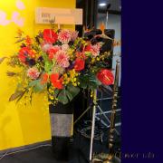 お祝い スタンド花 東京 公演祝い 花