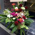 開店祝い お花 大きなアレンジメント 二子玉川の花屋ネイティブフラワーイーダ