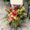 公演祝い 花 楽屋花 東京舞台公演に贈る花