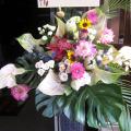 開店祝い スタンド花 東京 二子玉川の花屋 ネイティブフラワーイーダ