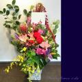 楽屋花 公演祝い 花 アレンジメント 二子玉川の花屋
