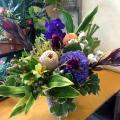 楽屋花 お祝いアレンジメント 舞台公演祝い お花 ネイティブフラワーイーダ
