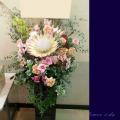 楽屋花 公演祝いスタンド花 キングプロテア