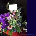 楽屋花 アレンジメント 紫 ネイティブフラワーイーダ