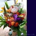 開店祝い 花 アレンジメント ネイティブフラワー ピンクッション プロテア