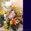 公演祝い 花 お祝い花 二子玉川の花屋 アレンジメント