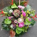 公演祝い舞台花 楽屋花 アレンジメント 二子玉川の花屋 ネイティブフラワーイーダ