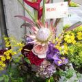 お祝い 花 アレンジメント 東京 二子玉川の花屋 ネイティブフラワーイーダ