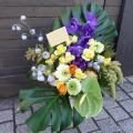 お祝い花 アレンジメント 二子玉川 花屋 ネイティブフラワーイーダ