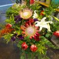 開店祝い 花 アレンジメント 二子玉川の花屋 ネイティブフラワーイーダ