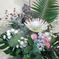 開店祝いのお花 楽屋花 二子玉川の花屋 ネイティブフラワーイーダ