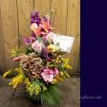 開店祝い 花 贈り物 二子玉川の花屋 ネイティブフラワーイーダ