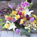 公演祝い 花 アレンジメント ネイティブフラワーイーダ