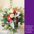 お祝い花 おまかせアレンジ7000 二子玉川の花屋ネイティブフラワーイーダ