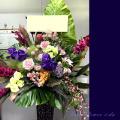 開店祝い スタンド花 東京 ネイティブフラワーイーダ