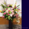 スタンド花 百花繚乱 公演祝い花