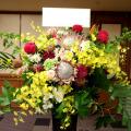 公演祝い スタンド花 楽屋花 舞台公演祝い花 二子玉川 花屋 ネイティブフラワーイーダ