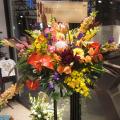 アパレルショップ 開店祝い スタンド花 南国花 ネイティブフラワーイーダ