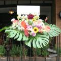 開店祝いスタンド花 ハワイアン モンステラ 二子玉川の花屋 ネイティブフラワーイーダ