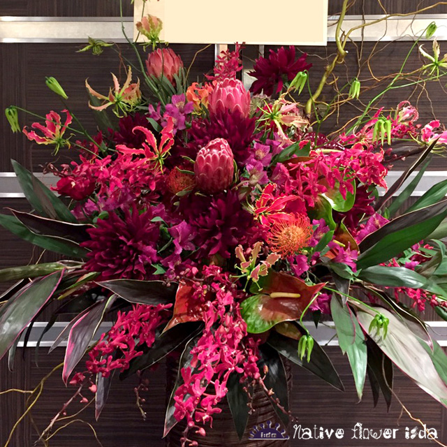 公演祝いスタンド花 赤い花 プロテア 二子玉川の花屋