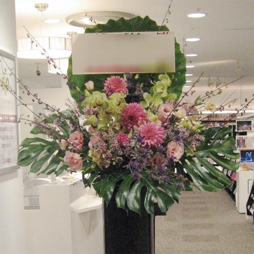 【お祝いスタンド花】ピンクダリア
