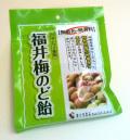 福井梅のど飴