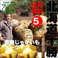 北海道の秋をまるごとお届け! 「泉さんの有機じゃがいも(メークイン)」(5kg)【送料無料】
