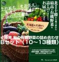 十勝発 旬の有機野菜の詰め合わせ Bセット(10〜13種類)【予約販売(季節限定)】<冷蔵>※現在土曜日の出荷のみとなっております