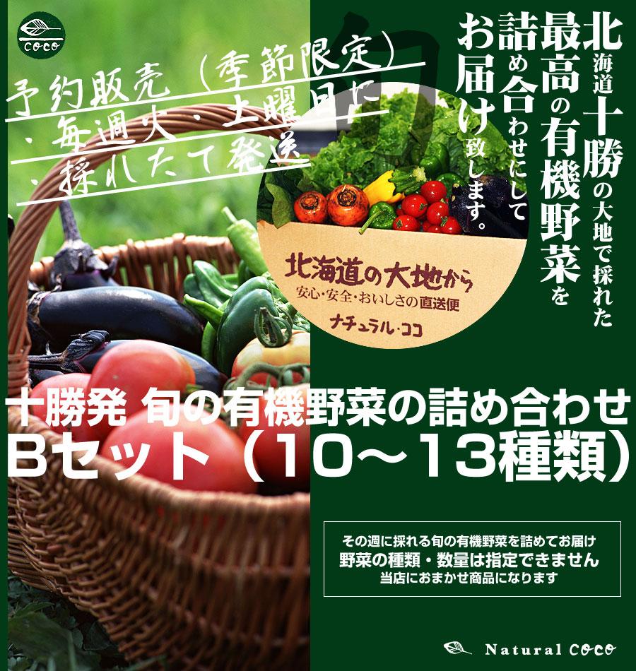 十勝発 旬の有機野菜の詰め合わせ Bセット(10~13種類)【予約販売(季節限定)】<冷蔵>※現在土曜日の出荷のみとなっております