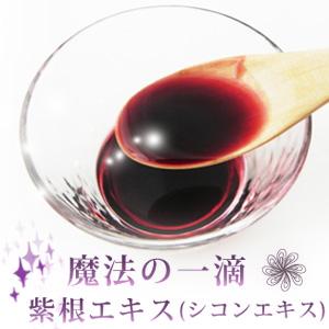 紫根エキス(シコンエキス) 20ml 【メール便選択可】