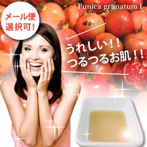 ザクロ果皮エキス 20ml 【メール便選択可】