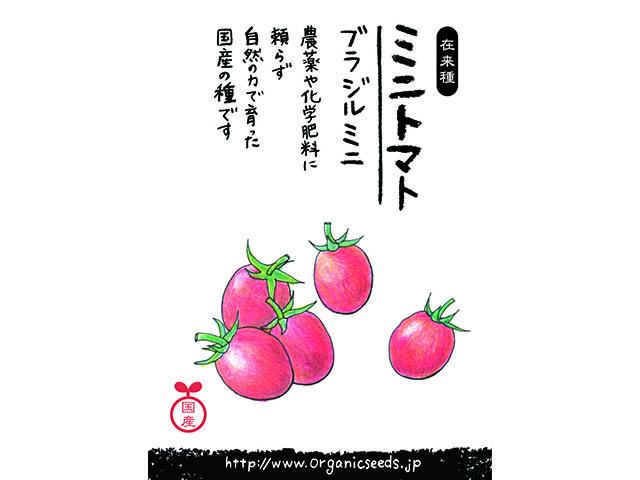 国産/自然農法種子ブラジルミニトマト
