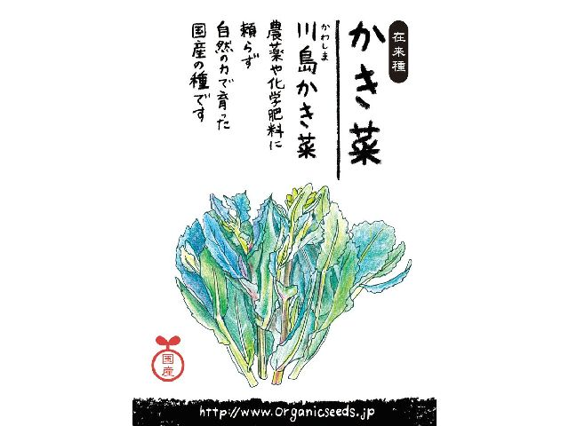 川島かき菜パッケージ