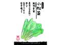 小松菜新戒青菜パッケージ