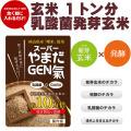 【岡山 曙米】 乳酸菌が玄米の10万倍 『発酵催芽玄米』スーパーやまだGEN氣
