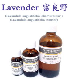 ラベンダー(富良野産 真正ラベンダー、トゥルーラベンダー)/アロマオイル(精油) 100ml