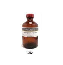 ローズマリー(モロッコ産 ロスマリン・マンネンロウ)/精油(アロマオイル) 250ml