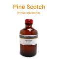 パイン・スコッチ(ブルガリア産 スコッチパインニードル、Pinus sylvestris)/精油250ml