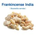 フランキンセンス・インド(Boswellia serrata)/(粒:中)(インド乳香) 50g