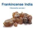 フランキンセンス・インド(Boswellia serrata)/(粒:中・黒)(インド乳香) 30g