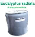 ユーカリ・ラディアータ種(オーストラリア産 ユーカリプタス・ラジアタ)/精油25lbs(約11kg)