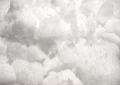 カンファー(Cinnamomum camphora)(天然樟脳) 100g
