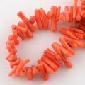 コーラル 珊瑚(染・オレンジレッド)/さざれチップビーズ(40cm)(1本)
