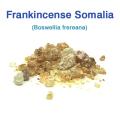 フランキンセンス・ソマリア(Boswellia frereana)(乳香) 30g
