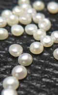 淡水パール ボタン 穴無 真珠(ホワイト系) 2~2.5mm玉(20個)