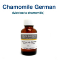 ジャーマンカモミール(オーストリア産 ブルーカモミール・ジャーマン種、Matricaria chamomilla)/精油30ml
