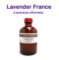 ラベンダー(フランス産・真正ラベンダー・イングリッシュラベンダー、Lavandula officinalis)/250ml