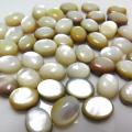 マザーオブパール ルース(裸石)・カボション(オーバル)【8×6mm】(8個)