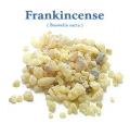 フランキンセンス・オマーン(Boswellia sacra)(乳香) 1kg